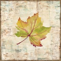 Nature Walk Leaves III Fine-Art Print