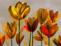 Contemporary Poppies Yellow Fine-Art Print