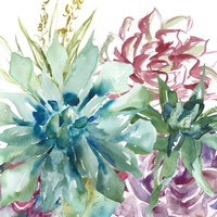 Succulent Garden Watercolor II Fine-Art Print