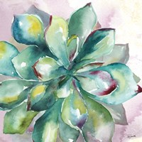 Succulent Watercolor I Fine-Art Print
