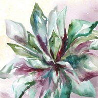 Succulent Watercolor II Fine-Art Print