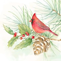 Winter Birds IV Cardinal Fine-Art Print