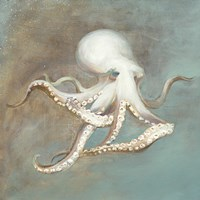 Treasures from the Sea V Fine-Art Print