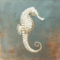 Treasures from the Sea I Fine-Art Print