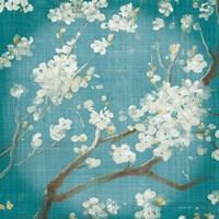 White Cherry Blossoms I on Teal Aged no Bird Fine-Art Print
