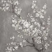 White Cherry Blossoms II on Grey Crop Fine-Art Print