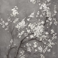 White Cherry Blossoms I on Grey Crop Fine-Art Print