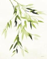 Bamboo Leaves IV Green Fine-Art Print