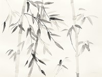 Bamboo Leaves III Fine-Art Print