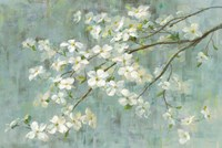 Dogwood in Spring on Blue Fine-Art Print