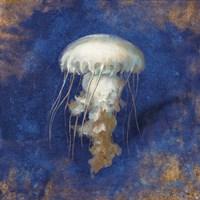 Treasures from the Sea Indigo VI Fine-Art Print