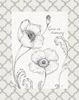 Blossom Sketches Words I Border Fine-Art Print