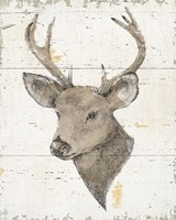 Wild and Beautiful II with Brown Fine-Art Print