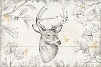 Wild and Beautiful IX Fine-Art Print