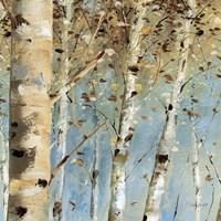 White Forest IV Fine-Art Print