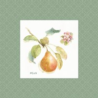 Orchard Bloom II Border Fine-Art Print
