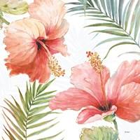 Tropical Blush II Fine-Art Print