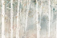 A Woodland Walk I Fine-Art Print