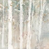 A Woodland Walk II Framed Print