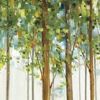 Forest Study IX Fine-Art Print