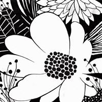 Feeling Groovy II Black and White Fine-Art Print