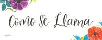 La La Llama VI Framed Print