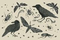 Hocus Pocus V Fine-Art Print