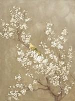 White Cherry Blossom II Neutral Crop Bird Fine-Art Print