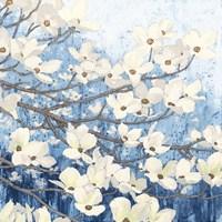 Dogwood Blossoms II Indigo Fine-Art Print