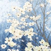 Dogwood Blossoms I Indigo Fine-Art Print