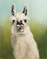 Whos Your Llama I Fine-Art Print