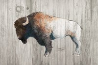 Colorful Bison Dark Brown on Wood Fine-Art Print