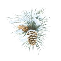 Into the Woods Pinecone II Fine-Art Print
