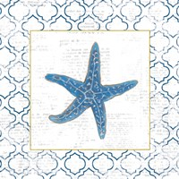 Navy Starfish on Newsprint with Gold Fine-Art Print