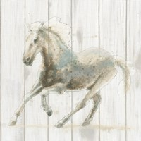 Stallion II on Birch Fine-Art Print