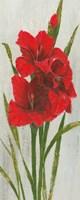 Red Simplicity I Fine-Art Print