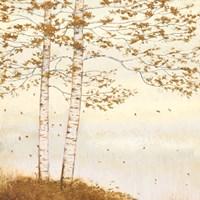 Golden Birch I Off White Fine-Art Print