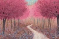 Forest Pathway Spring Fine-Art Print