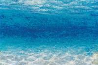 Underwater I Fine-Art Print
