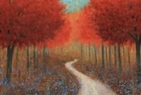 Forest Pathway Fine-Art Print