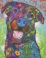 Louie Fine-Art Print
