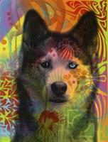 Husky's Eye Fine-Art Print
