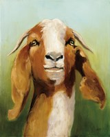 Got Your Goat Fine-Art Print