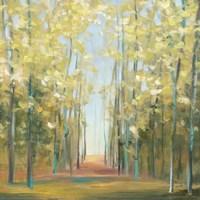 Aspen Grove II Fine-Art Print