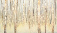 Birches in Winter Fine-Art Print