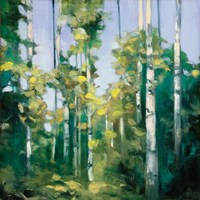Birches Fine-Art Print