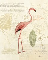 Floridian I Fine-Art Print