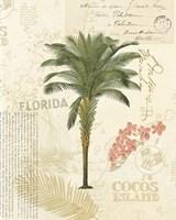 Floridian II Fine-Art Print