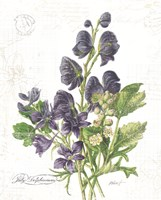 July Delphinium on White Fine-Art Print