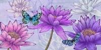 Nympheas and Butterflies Fine-Art Print